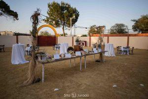 Plaza de toros celebraciones